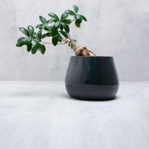 Pianca Ceramics - large blue vase - ceramic bonsai pot - modern ceramic planter